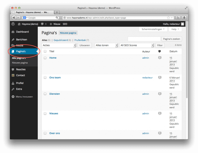 Pagina's in WordPress