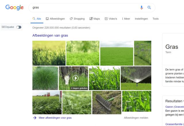 Afbeelding in Google zoekresultaten