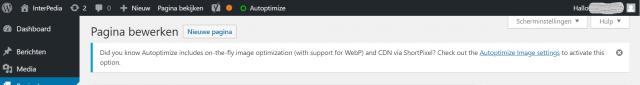 Pagina bekijken in WordPress